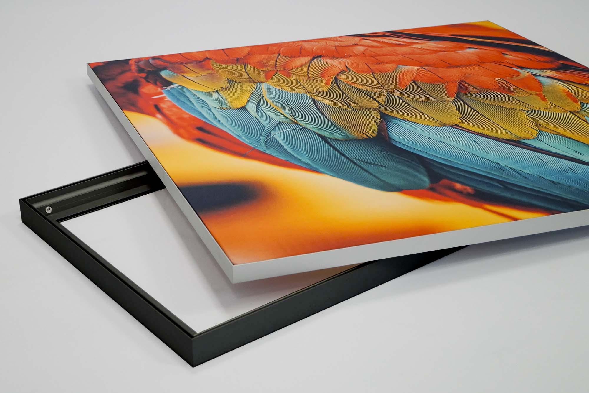 SEG Fabric Frame